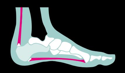 Feet Support Podotherapie - Hielpijn Centrum Twente